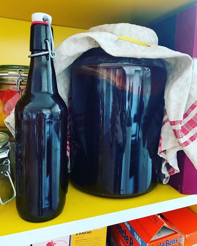 Här är den; min första flaska Kombucha! Det blev ungefär 50cl. Bredvid står dock min första riktiga sats, och det lär väl bli upp emot 4 liter.